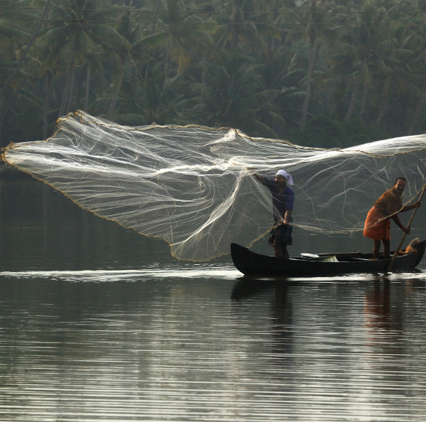 Fishing in the backwaters